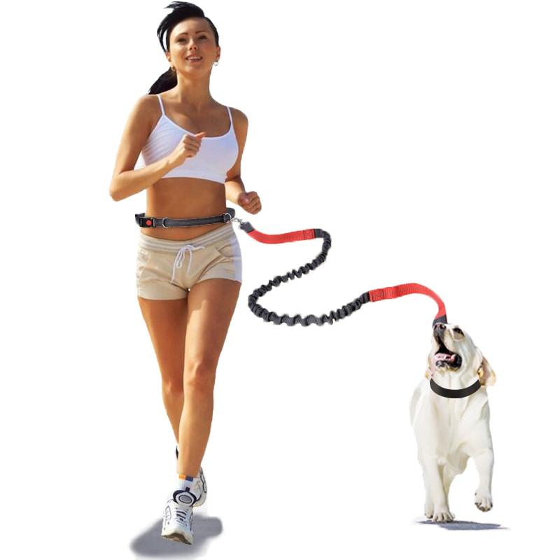 Manos libres retráctil correa de perro golden retriever bull terrier perro mascotas...