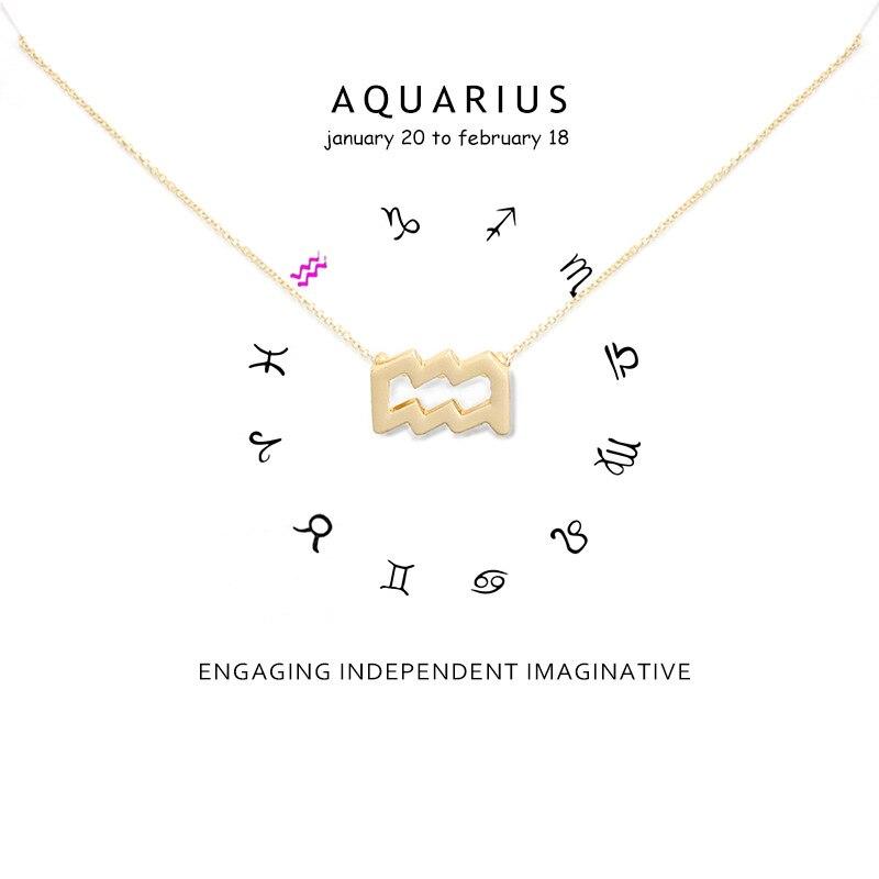 12 Constellation collier verseau collier pendentif collier pour femmes clavicule collier ras du cou colliers carte cadeau danniversaire