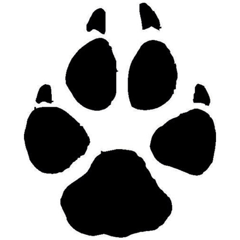 Автомобильная наклейка с рисунком лапы животных собаки кота, декоративные наклейки, милая необычная фотография, 12*15 см