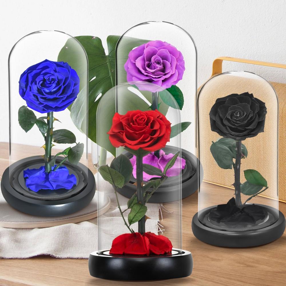 ورود أبدية من Beauty and The Beast في قبة زجاجية ، 6 ألوان ، زهور ، لعيد الحب ، لعيد الميلاد ، التسليم المباشر
