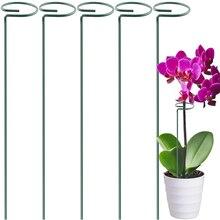 Support plante piquets jardin fleur Support piquet simple tige Support piquet plante Cage Support anneau pour fleurs tomates