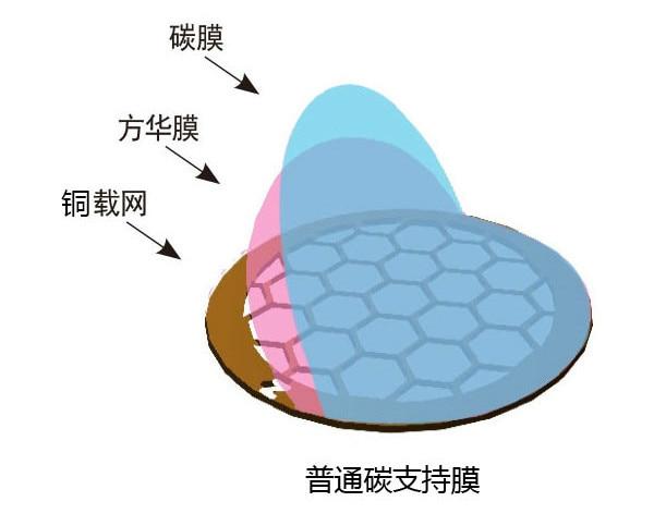 50 películas de soporte de película de carbono común con malla de cobre de 50 a 400 para microscopía electrónica de transmisión
