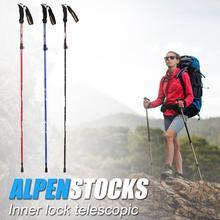 Hot Sale Walking Sticks Skillful Manufacture Trekking Pole 5 Sections EVA+Aluminum Telescopic Outdoor Hiking Walking Stick
