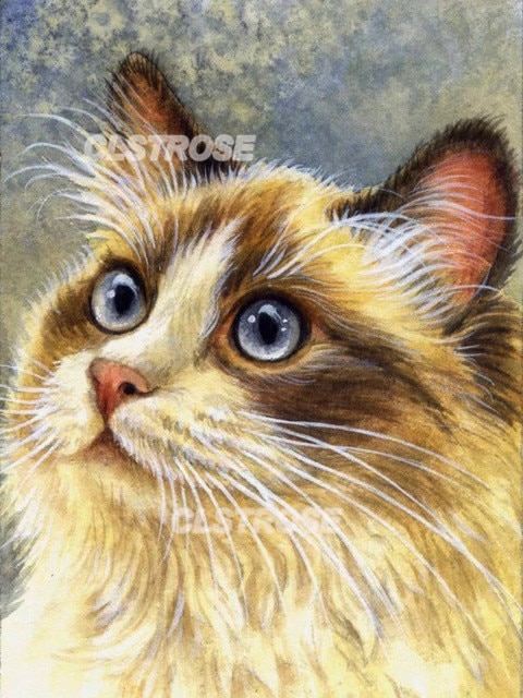 Diy Diamond Painting Animal Yellow Cat Home Decoration Wall Art Handmade Gift Stickers Diamond Embroidery Can Be Customized  - buy with discount