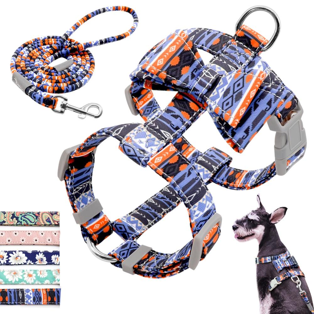 Регулируемый нейлоновый поводок для собак, набор для питомцев, щенков, шлейка с бантиком, жилет для прогулок, поводок для маленьких и средних собак, чихуахуа, Arnes Perro