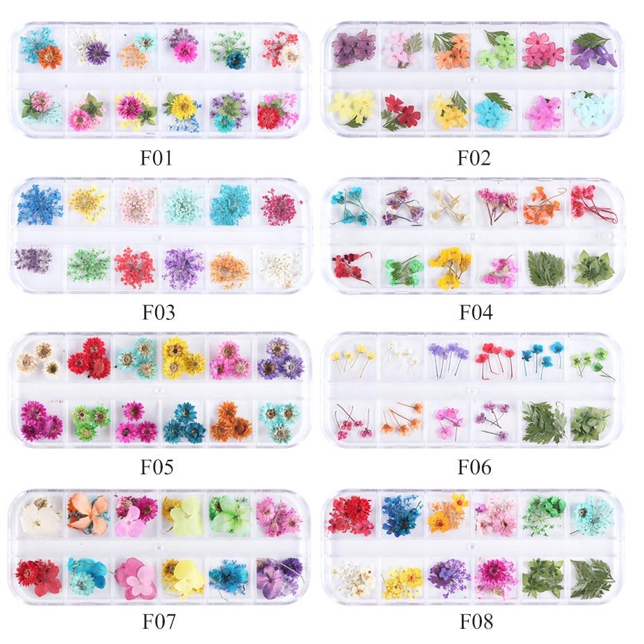 11 estilos 12 treliça encaixotado arte do prego flor seca apliques 12 grade encaixotado colorido pequena margarida gypsophila decoração da arte do prego jóias