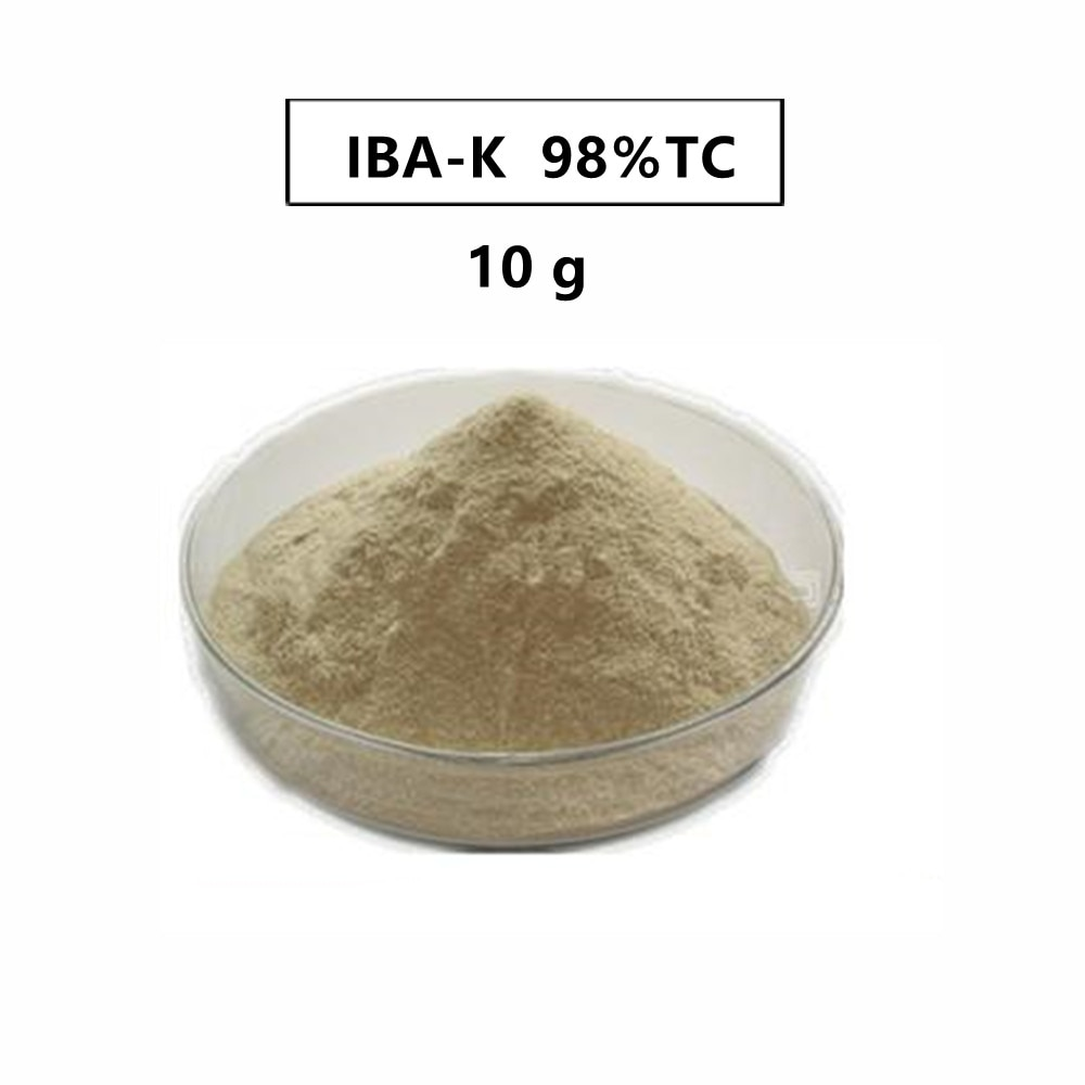 10 gram indole-3-butyric acid potassium IBA-K water soluble 3-Indolebutyric Acid potassium IBA Auxin with low price
