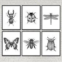 Affiche moderne avec illustrations dinsectes  peintures murales noires et blanches a lhuile  peintes a la main  images murales imprimees  decoration de maison