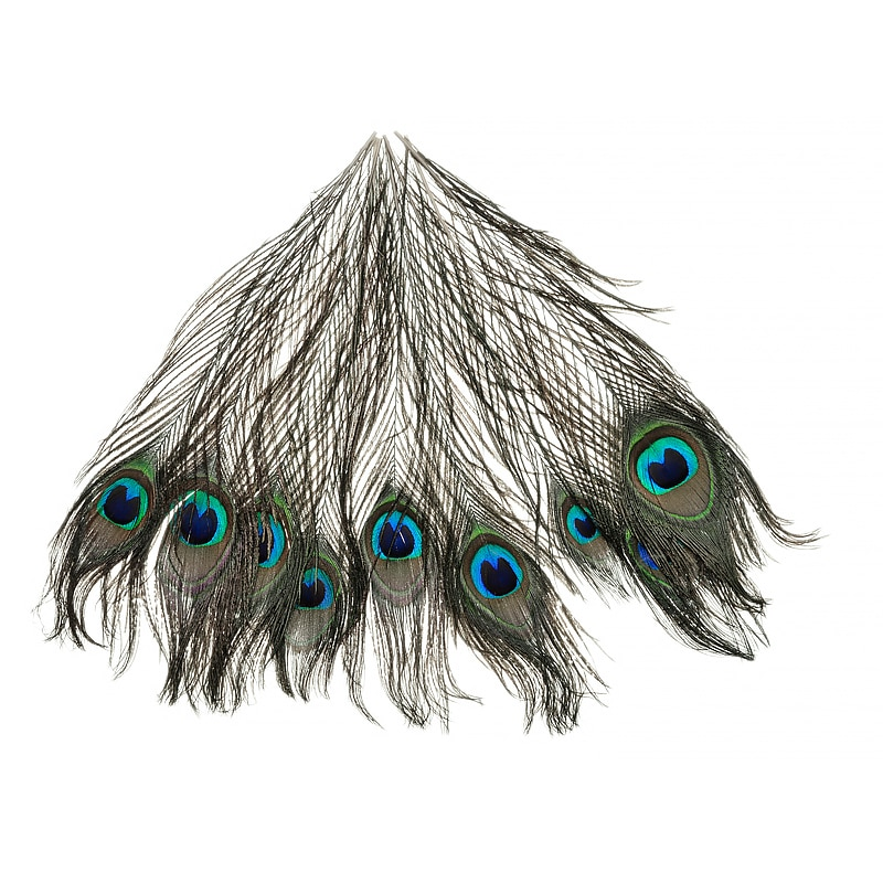Mayitr 10 Uds pluma de pavo real hermoso Pavo Real Natural plumas de la cola ojo 10-12 pulgadas para la decoración artesanal de tela DIY