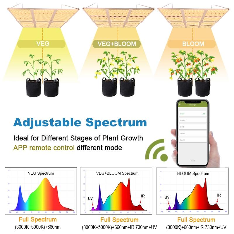 Quantum Board Complete Kit Full Spectrum Led Lights SF6000 600W Samsung LM301H/B Board King Led Grow Light Plangting Indoor enlarge