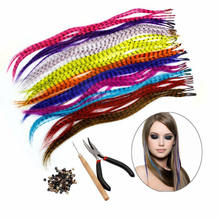 35PCS Synthetic Feathers Feather Hair Extension Kit +100 Beads+One Plier+1 Hook Feather Reciprocatio
