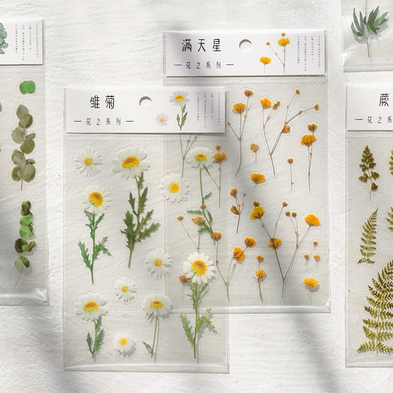 pegatinas-de-palabras-japonesas-de-trebol-de-margaritas-naturales-material-transparente-para-mascotas-flores-hojas-plantas-pegatina-decorativa-estetico-12-disenos
