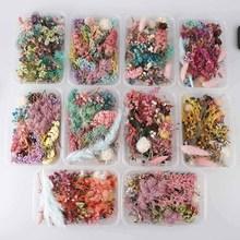 Collier de vraies fleurs séchées 1 boîte   Bougie sèche pour aromathérapie pendentif en résine époxy collier bijoux fabrication artisanat, accessoires bricolage
