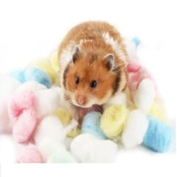 new hot 100pcs natural colorful cotton balls small animal breathable warm hamster toy cage house filler pet supply