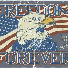 American Flag with freedom forever Polyester with USA hawk any hobby history USA FLAG BANNER