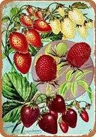 Signe retro Vintage 8x12  1902  arbre et buisson  fraises  baies  Fruits amusants  legumes  nourriture  doux  decor mural dete  decoration de maison