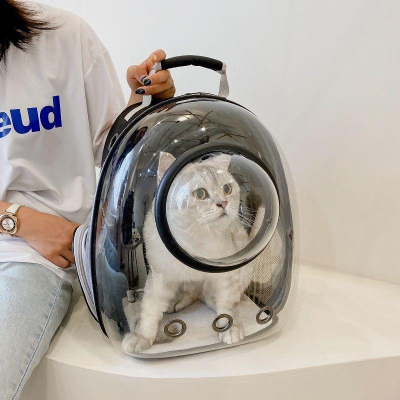 Mochila porta gato transpirable, Transportín de Animal PEQUEÑO portátil grande, bolsa transparente...