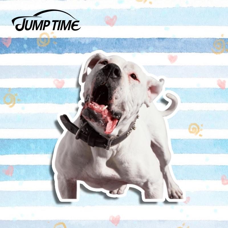 Tiempo de salto 13cm x 11,3 cm pegatina para coche mascota Dogo Argentina vinilo pegatina portátil viaje equipaje impermeable 3D coche estilismo perro gráficos