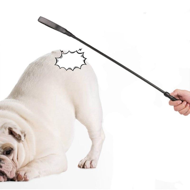 Fashion Long Handle Black Dog Training Whips Dog Behavior Management Stick Horse Riding Training Tool Pet Training Supplies