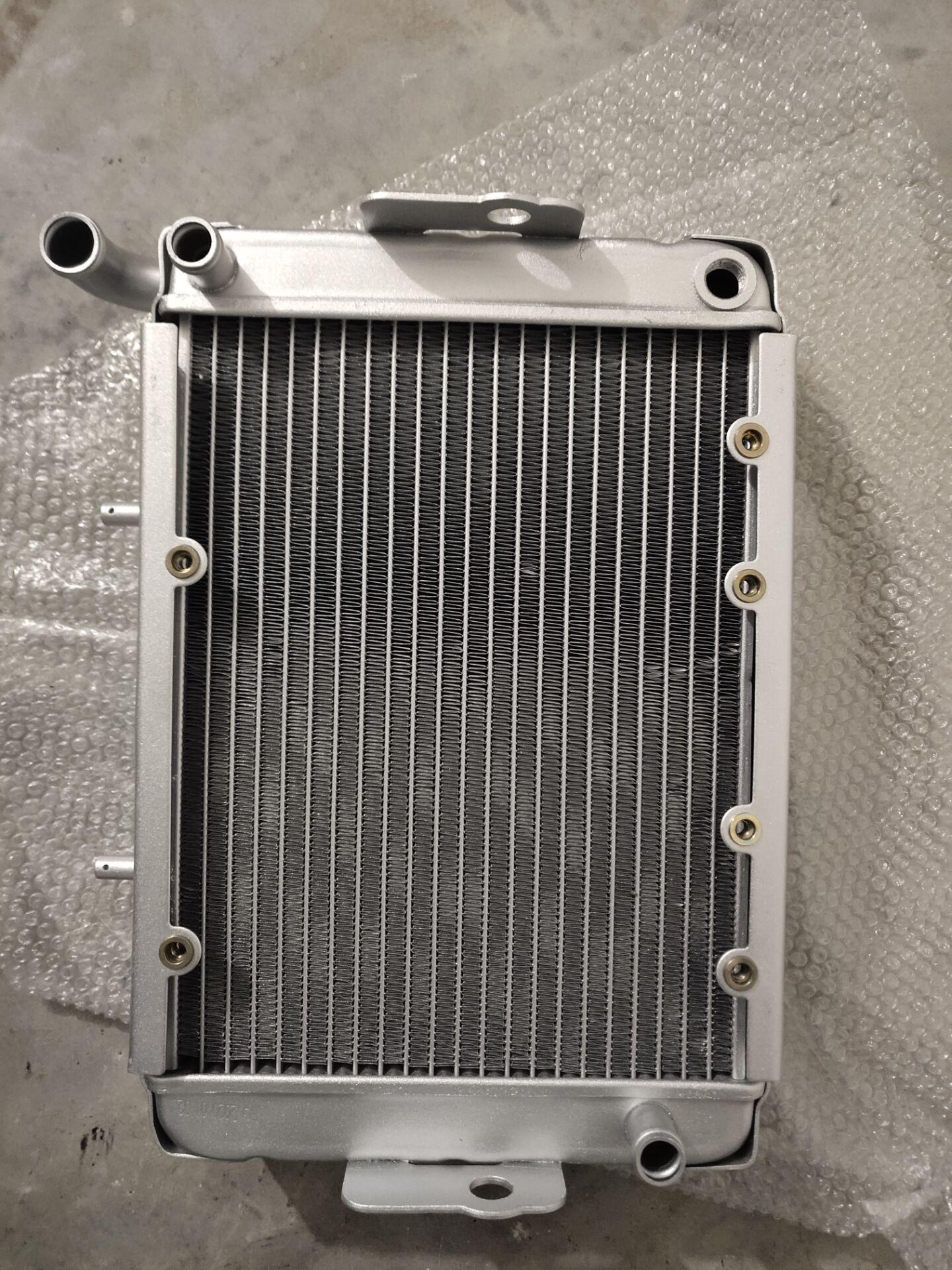 Wasser kühler kühlung maschine fit für LINHAI 300ATV/Linhai LH300 CUV 4WD