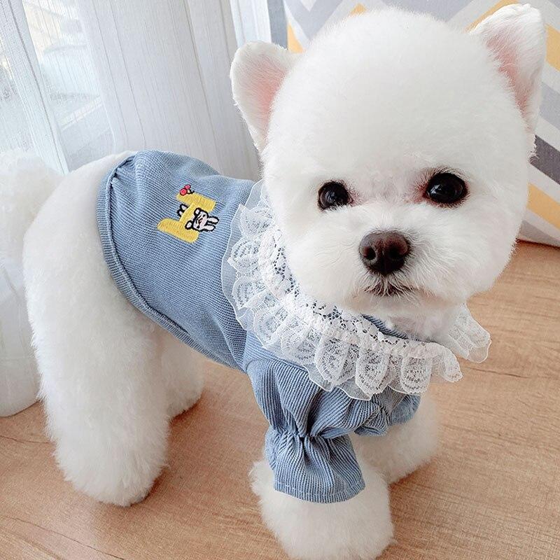 Amarelo azul roupas para animais de estimação do cão com capuz sweatshirts doce camisa de veludo com gola de renda pulôver gato jaquetas mangas bolha com capuz l