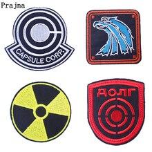 Prajna-Patch pour centrale nucléaire   Patch de radiations de usines nucléaires à rayures, Factions mercenaires Loners, Patch pour Badge de puissance atomique, Applique tchernobyl, bricolage