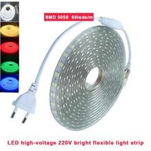 방수 Led 테이프 AC220V LED 스트립 SMD 5050 유연한 빛 60leds/m 전원 플러그 1M-26M 야외 정원