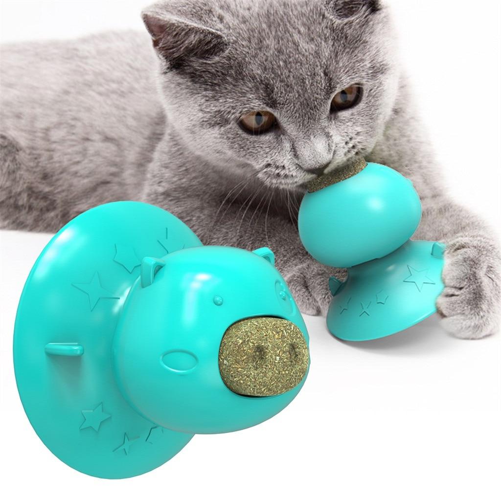 Cepillo de dientes Para Gatos, Productos Para Mascotas Gatos, Productos Para Mascotas,...