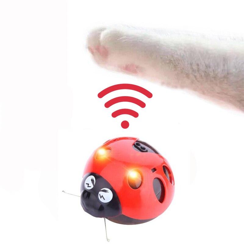 Juguetes interactivos para gatos Atrápame si puedes súper divertido juguete para gatos AAA a batería juguete para mascotas proveedor