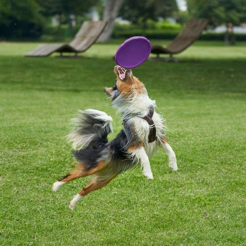 Juego de platillo volador de silicona EVA para perros, discos voladores resistentes...