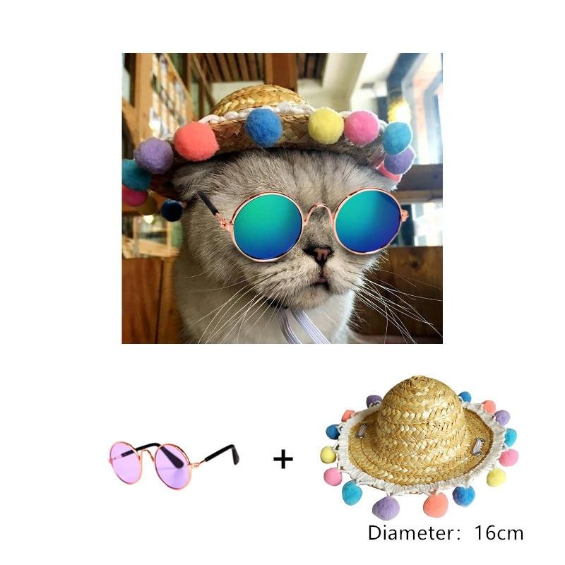 1pc produk haiwan peliharaan kucing peliharaan yang indah gelas - Produk haiwan peliharaan - Foto 6