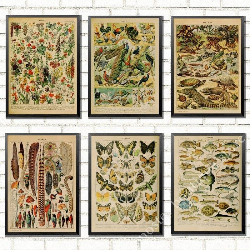 Pósteres de diseño de fondo con diseño de identificación educativa de vegetales y dinosaurios de aves, pegatinas de pared para la decoración del hogar de la sala de estar