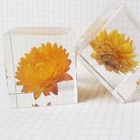 Sun Chrysanthemum  Colorful Chrysanthemum Daisy Paperweight Block Dandelion Specimen Resin Decoration Raw Flower Crafts Gifts