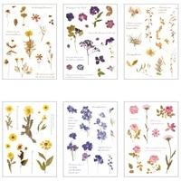 1 sheet fresh dried flowers art museum sticker notebook diary diy decorative stickers