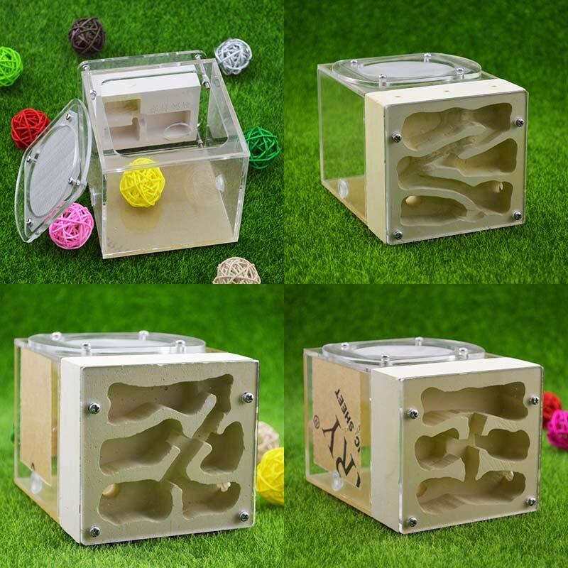 Criativo acrílico gipsita híbrido eco animal de estimação criação ninho formigas fazenda casa inseto caixa coleção