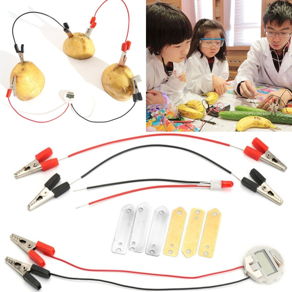 Potato Fruit Biologia Energy Generate Electricity Science Experiment Educational Toys For Children K