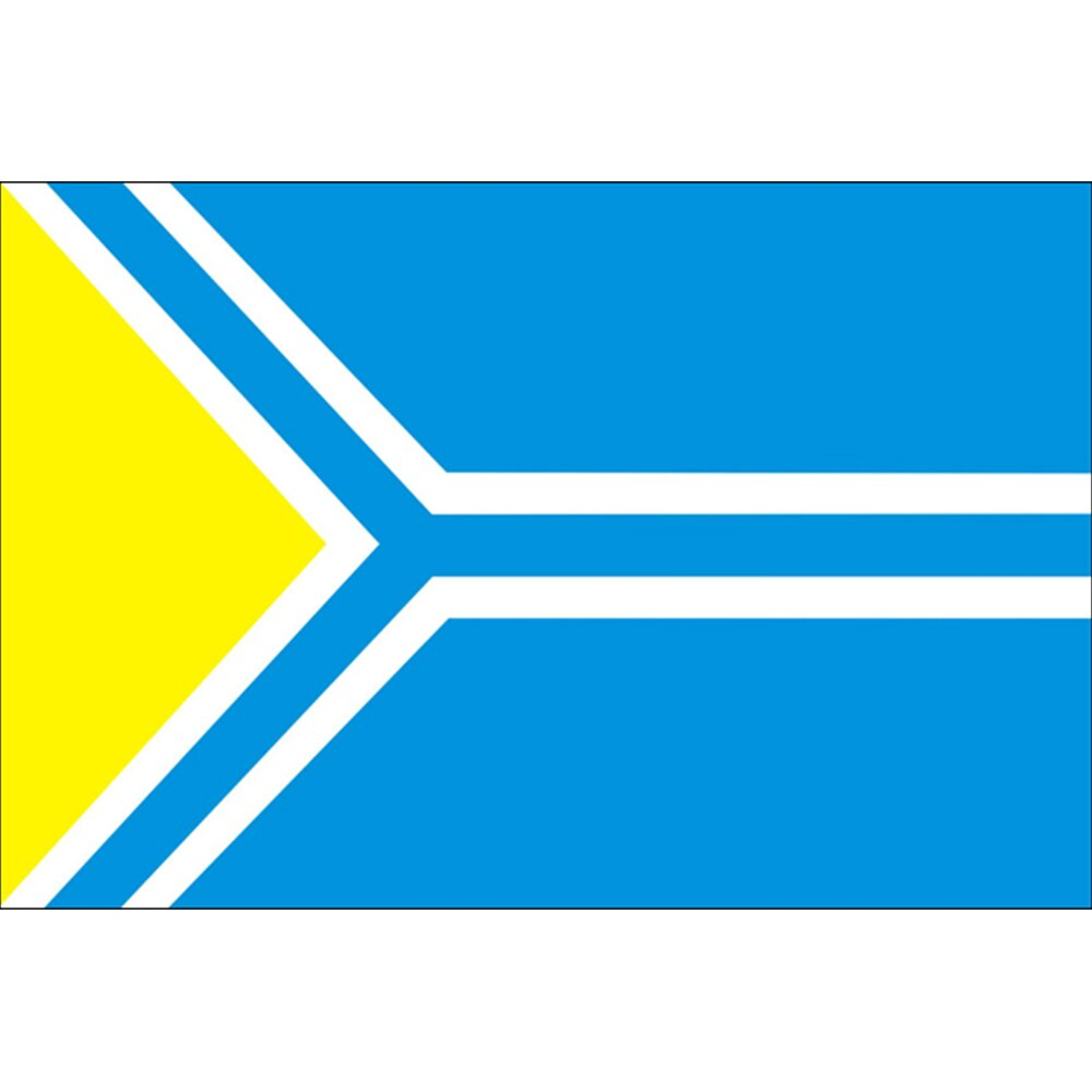 Bandera de la República de Tuva bandera nacional de Rusia 150X90CM 100D poliéster 3x5FT arandelas de latón bandera personalizada