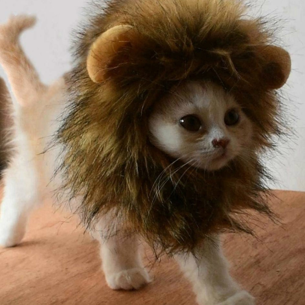 Funny Pet Small Dog Cat Costume Lion Mane Wig Cap Hat for Cat Dog Halloween Christmas Clothes Fancy