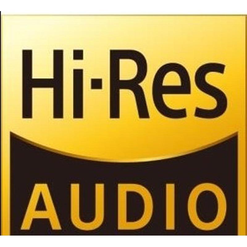 Pegatinas de Audio de alta resolución para Fiio, Shanling, Sony Walkman,Ibasso, Iriver,...