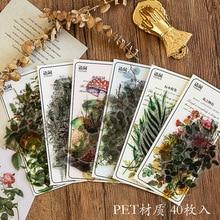 Pegatinas de decoración de plantas refrescantes, adhesivos de flores para diario, álbum de recortes, papelería, 40 unids/paquete