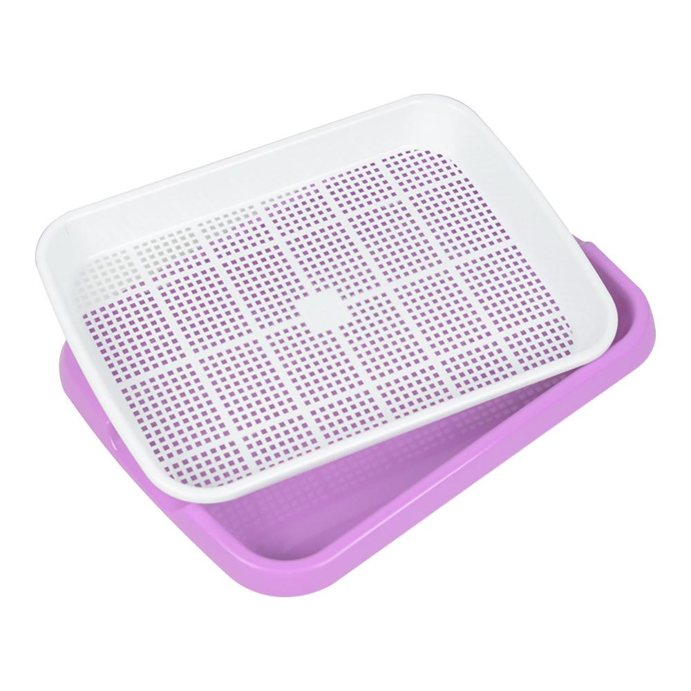 Купить с кэшбэком Soilless Culture Beans Hydroponics Seed Germination Tray Seedling Sprout Plate Grow Nursery Pots Vegetable sprouting Trays tools