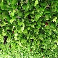 simulation of grape leaves fake flowers vines leaves green leaves ceiling decoration plastic leaves home decor