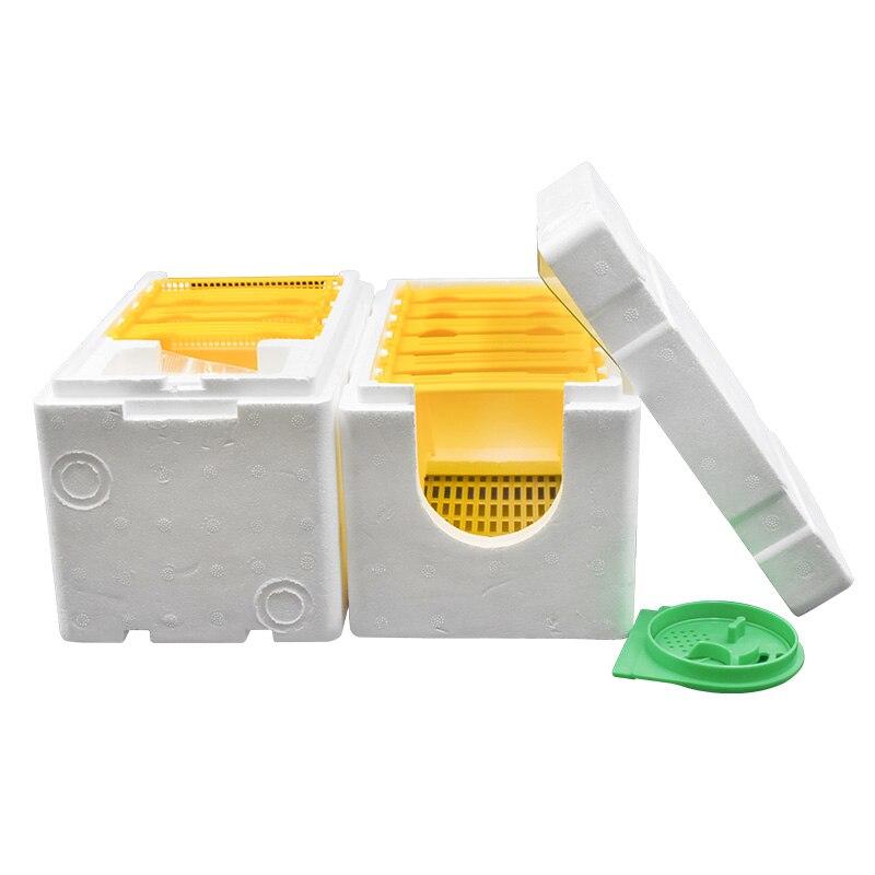 Коробка для инструментов для пчеловодства 2 слоя урожая королева опыление пчеловодства для пчеловодства копуляции королева резерв улей улья