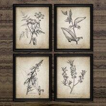 Модульные принты, фотографии, украшение для дома, скандинавский стиль, ботанические винтажные растения, картины, холст, постер, современная ...
