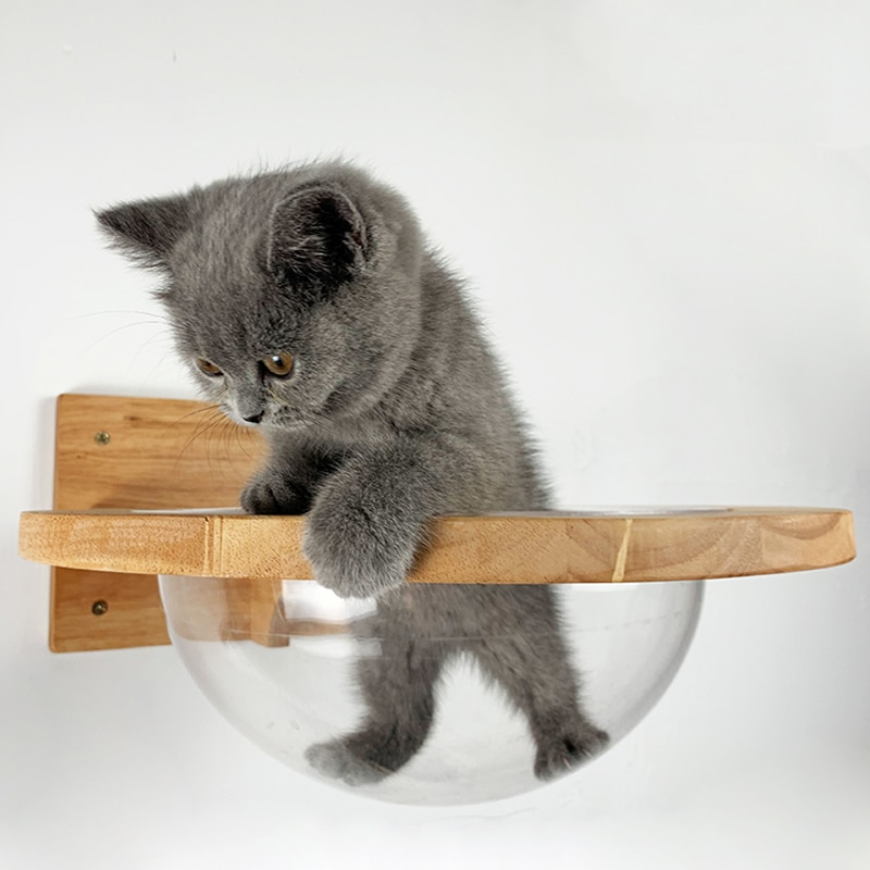 Wall-mounted Transparent Space Capsule Cat Wall House Cat Tree Wooden Cat Climbing Frame Kitten Bed Springboard Pet Furniture