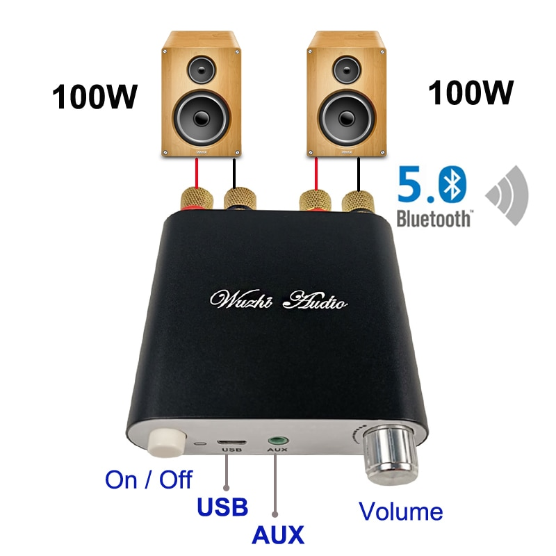 2*100W placa amplificadora de Audio Bluetooth 5,0 TPA3116D2 Digital TPA3116D2 HiFi estéreo...