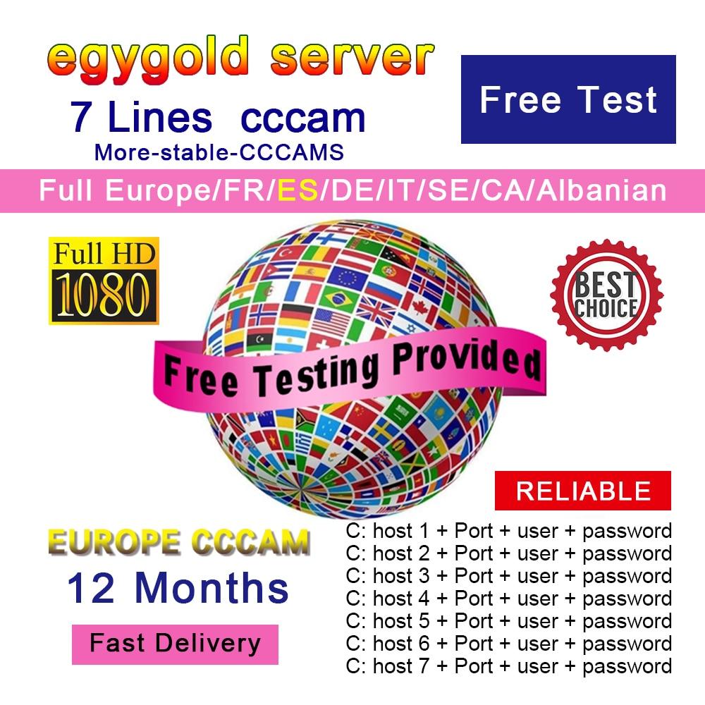 Egygold CCCAM TV Receiver AV Cable line in europe cline egygold 7 lines Freesat cccam cline for DVB-