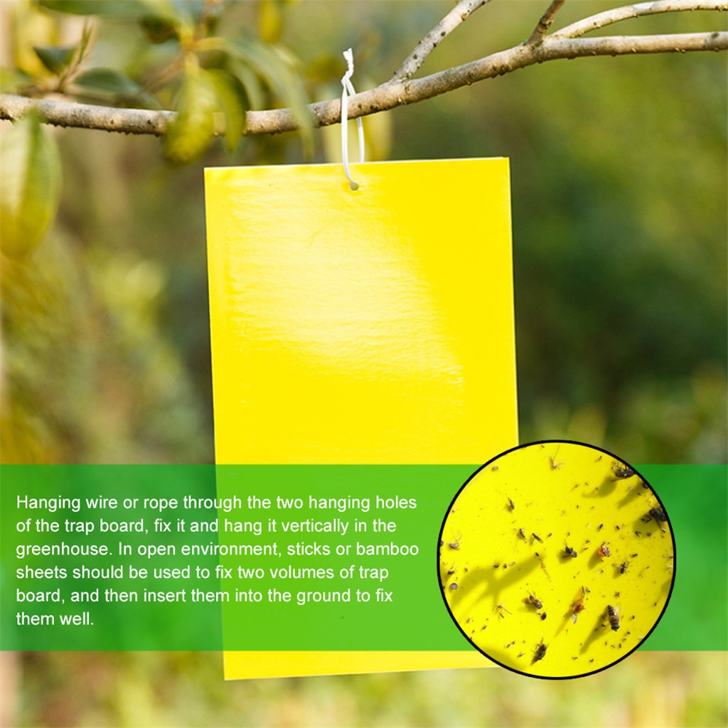 10/20/30 шт двухсторонняя желтая липкая ловушка мухи насекомые палка деревянная доска для ловли инсектицидов борьба с вредителями Клей стикер # R25