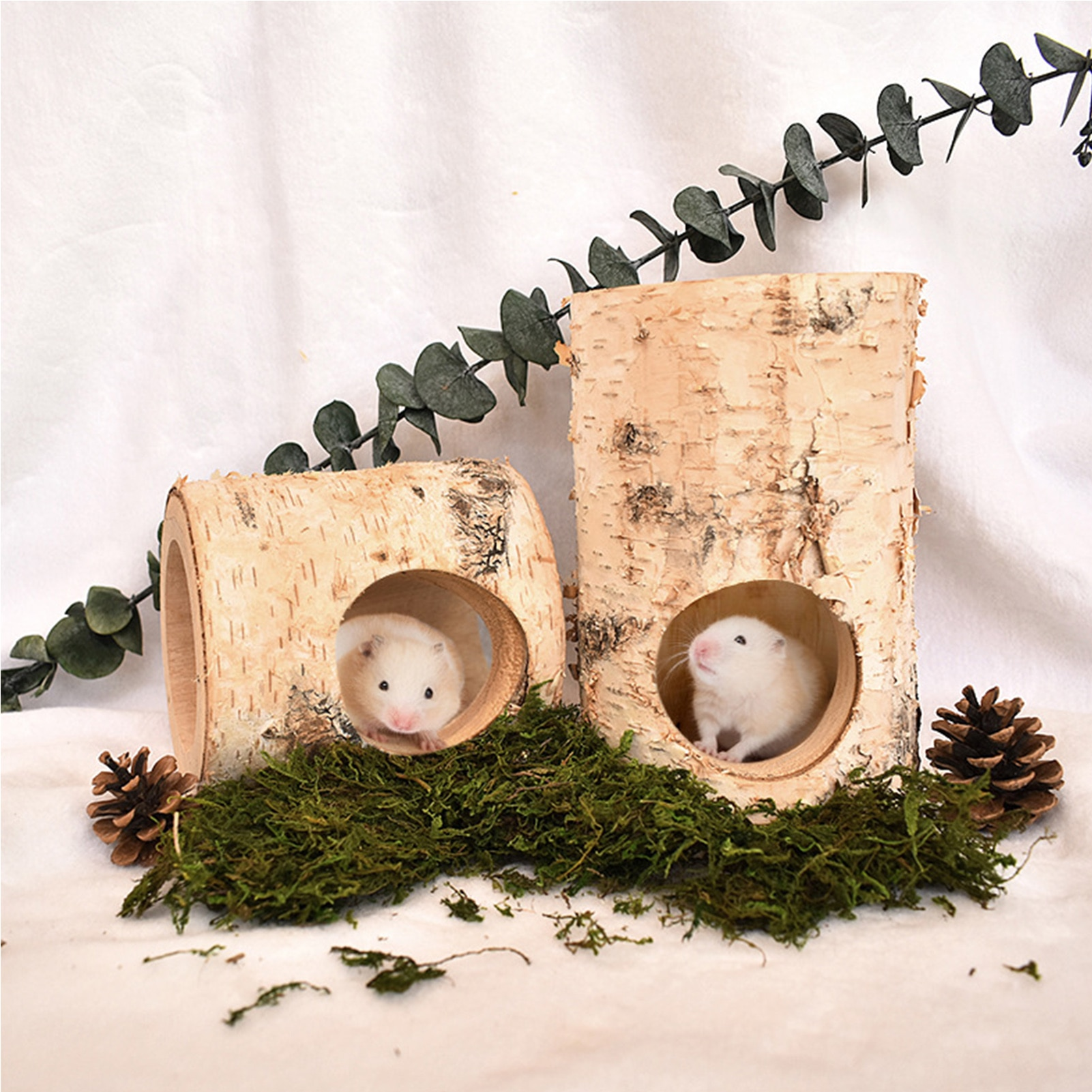 Birch Mouse Hole Natural Solid Wood Animal Tunnel Pipe Chew Toy Droshipping  - buy with discount