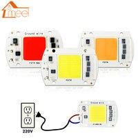 10W 20W 30W 50W COB LED Lamp Chip 220V 240V LED COB Bulb Lamp IP65 Smart IC Driver Cold/ Warm White LED Spotlight Floodlight